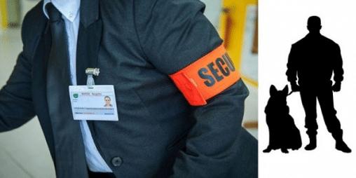 securite surveillance 212179048